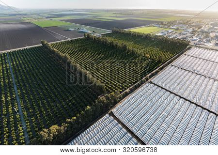Aerial view of coastal farm fields and citrus groves near Camarillo Airport in scenic Ventura County, California.