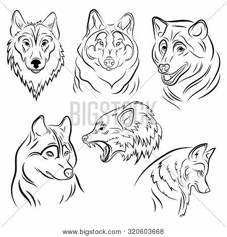 Set Of Portraits Of Wolves. Collection Of Wolf Heads. Black And White Illustration Of A Wild Animal.