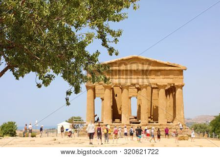 Concordia Temple And Tree In The Valley Of The Temples Of Agrigento, Sicily. Focus On The Tree.