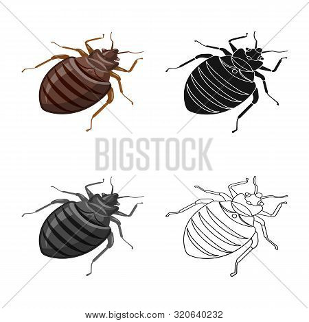 Vector Design Of Beetle And Black Logo. Set Of Beetle And Arthropod Stock Symbol For Web.