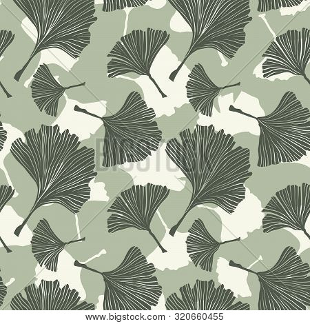 Ginkgo Biloba Botany Plant, Line Art Pale Sage Colored Leaves On Ivory Background. Health Monochrome