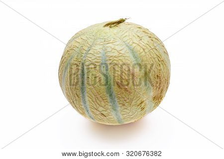 Entire Muskmelon Isolated On A White Background