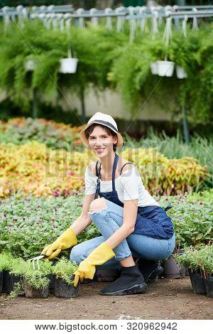 Smiling Pretty Young Woman Hoeing Soil In Flower Pots When Working In Nursery Garden