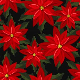 Red Poinsettia Christmas Flowers Seamless Pattern. Cute Christmas Holidays Seamless Pattern. Design