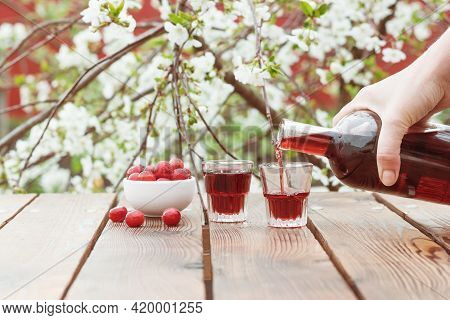 A Woman's Hand Pours Cherry Alcohol On A Background Of Cherry Blossoms. Homemade Alcohol Made From C