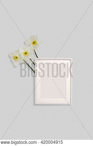 Beautiful Composition Of Daffodils, Spring Flowers. Blank Frame For Text, Yellow Daffodils Flower On