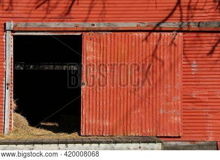Vintage Retro Bright Red Metal Farm Barn Loading Dock Door Open With Livestock Feed Hay And Tree Sha