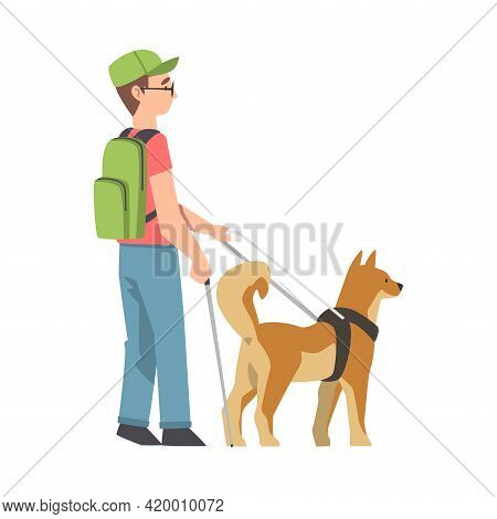 Blind Boy Guided By Seeing Eye Dog On Leash, Trained Animal Helping Disabled Person, Rehabilitation,