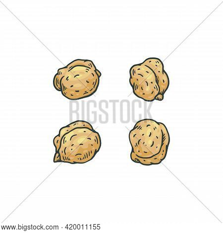 Chickpea Seeds In Various Points Of View Engraving Vector Illustration Isolated.