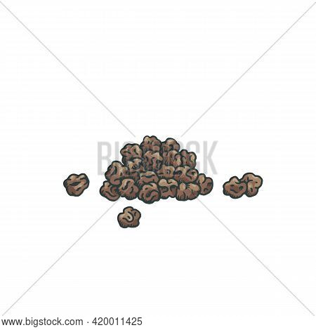 Heap Of Black Peppercorn Seeds Engraving Hand Drawn Vector Illustration Isolated.