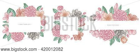 Floral Frames With Pastel Hibiscus, Plum Flowers, Peach Flowers, Sakura Flowers, Magnolia Flowers, C