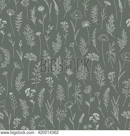 Wildflowers Seamless Pattern, Floral Vector Illustration. Midsummer Meadow Herbs And Flowers. Elegan