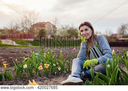 Smiling Gardener Relaxing Among Fresh Tulips, Daffodils, Hyacinths In Spring Garden. Happy Woman Adm