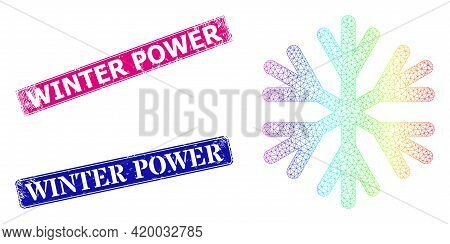 Rainbow Colored Network Snow Flake, And Winter Power Corroded Framed Rectangle Watermarks. Pink And
