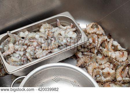 Many Peeled Raw Headless Large Shrimps Without Shell
