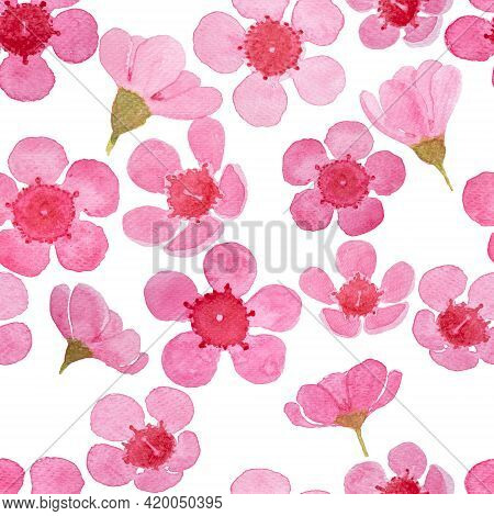 Drawing Of Pink Petals Wax Flower Blossom Seamless Pattern Illustration, Watercolor Flora Painting I