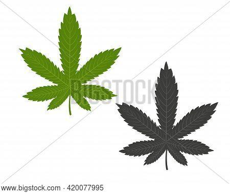 Marijuana Green Leaf. Ganja. Drug. Hemp Marijuana Hemp Leaves