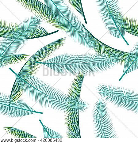 Exotic Palm Tree Branches Vector Seamless Pattern. Beautiful Textile Print. Natural Organic Palm Tre
