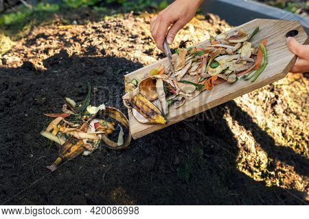 Throwing Food Leftovers In Garden Compost Pile. Recycling Organic Kitchen Waste