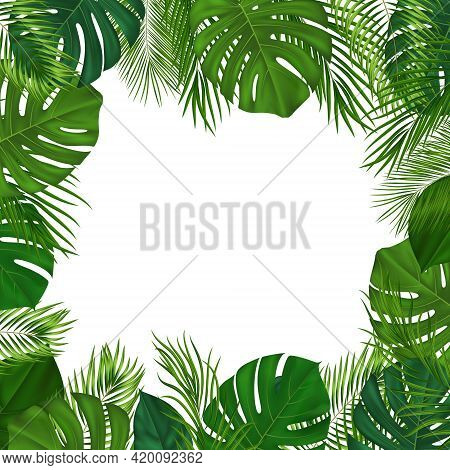 Summer Tropical Background With Green Palm Leaves. Exotic Botanical Design With Jungle Plants For In
