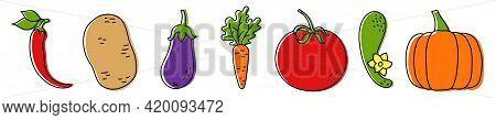 Vegetable Sketch. Chilli Pepper, Potato, Eggplant, Carrot And Tomato. Fresh Cucumber With Green Leav