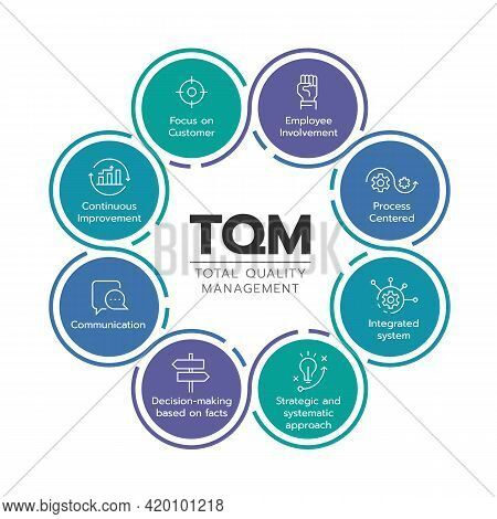 Tqm (total Quality Management) Diagram Chart With 8 Icon Module In Circle Sign Vector Design