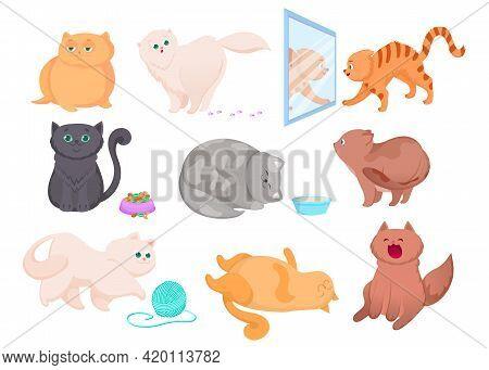 Different Breeds Of Cute Kittens Vector Illustrations Set. Happy Pet Sitting Near Full Bowl, Orange