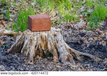 Mineral Block On An Old Tree Stump Being Eaten By Deer For The Minerals During Spring.  Selective Fo