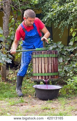 Man Pressing Grapes