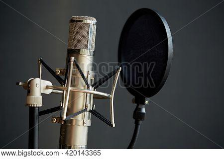 Professional Studio Vocal Microphone. Studio Microphone And Pop Shield On Microphone Stand On Grey B