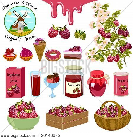 Illustration With Raspberries And Products.branches With Raspberries And Products From It In A Vecto