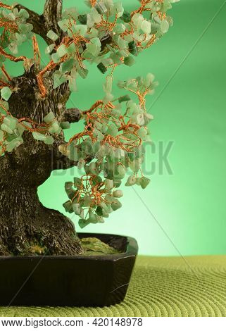 A Closeup Of A Green Jade Stone Money Tree In A Green Surrounding Environment To Enrich Viewers With