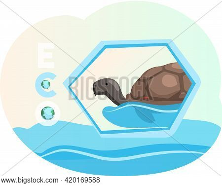 Eco Friendly, Nature Conservation, Environmental Protection. Turtle Swimming In Sea Or Ocean Water.