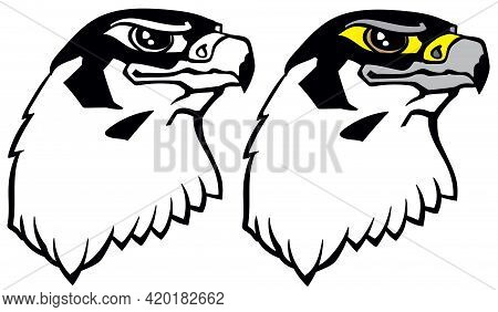 Head Of A Falcon The Bird Of Prey. Falconry. Black And White Isolated Vector