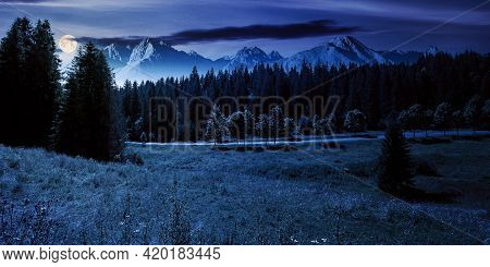 Composite Mountain Landscape In Summer At Night. Spruce Forest Down In The Valley In Full Moon Light