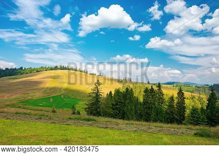 Forest On The Meadow Beneath A Clouds On The Sky. Beautiful Outdoor Background Of Carpathian Country