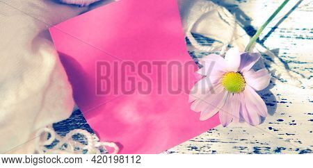 Blurred Empty Card  With Summer Flower Chamomile. Light And Shadow. Nostalgic Vintage Background. Re