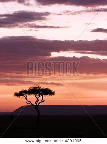 Sun Setting In Masai Mara