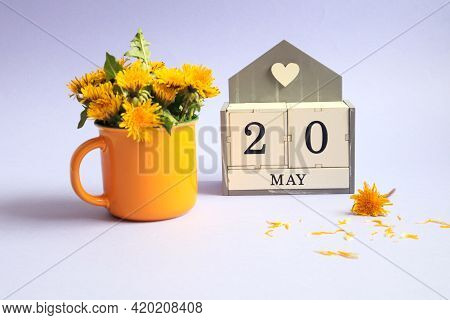 Calendar For May 20: Cubes With The Number 20, The Name Of The Month Of May In English, A Bouquet Of