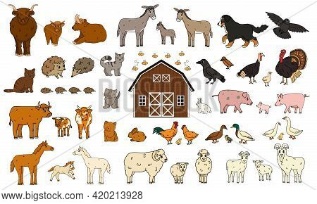 Set Of Cute Cartoon Doodle Farm Animals. Vector Collection Of Donkey Goose Cow Bull Pig Hog Chicken