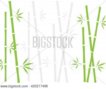 A Bamboo Plants And Bamboo Shadows Background