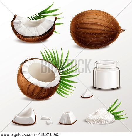Coconut Realistic Set With Nut Segments  Flesh Pieces Jar Milk Powder Dry Flakes Palm Leaves Vector