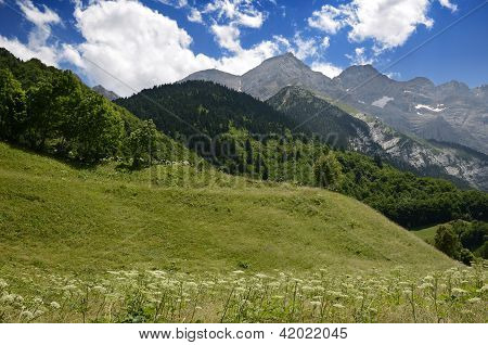Pyrenees In Summer