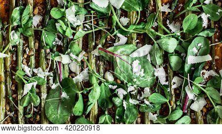 Fresh salad cress close up