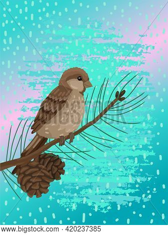 Sparrow, Plumage Bird, Sits On Brunch Pine Tree . Vector Drawing Cartoon Illustration With Doodle Ba
