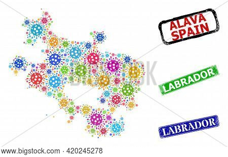 Vector Viral Collage Alava Province Map, And Grunge Labrador Seal Stamps. Vector Colorful Alava Prov