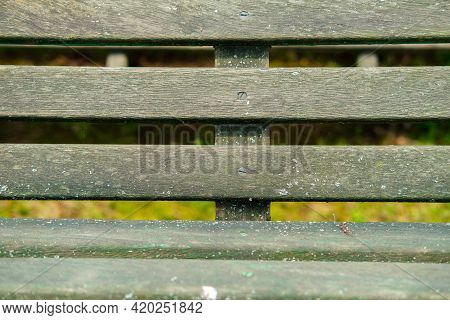 View Through An Old Wooden Garden Bench.