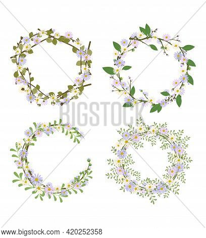 Set Of Daisy Wreath. Round Frame, Cute Purple And White Flowers Chamomile With Yellow Hearts. Festiv