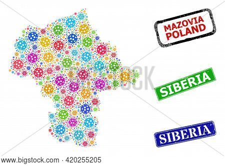 Vector Cell Collage Mazovia Province Map, And Grunge Siberia Badges. Vector Colored Mazovia Province