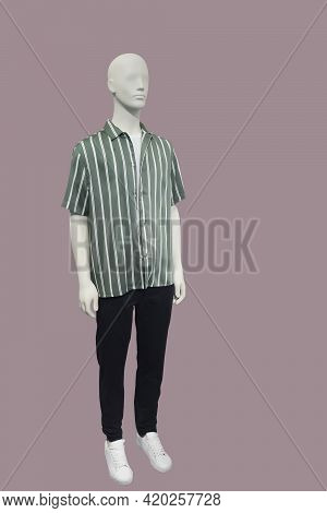 Full Length Images Of A Male Display Mannequin Wearing Striped Short Sleeve Shirt And Black Trousers